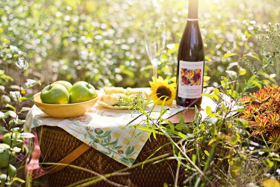 Organizirajte piknik i privucite goste!