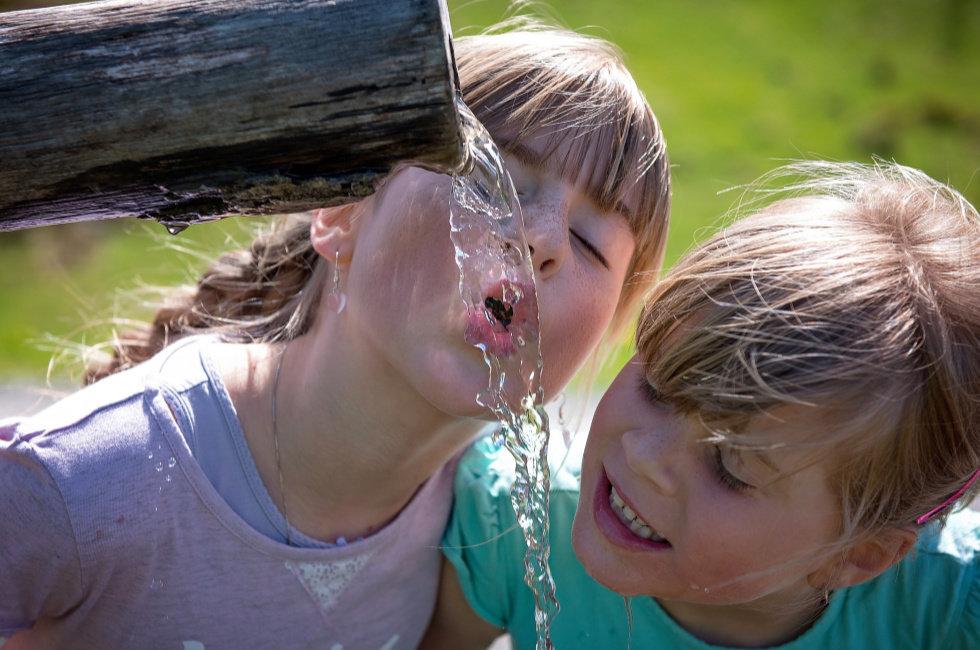Kvaliteta pitke vode